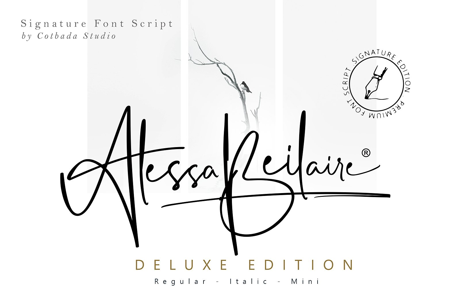Alessa Beilaire Deluxe手写连笔笔触时尚英文字体免费下载